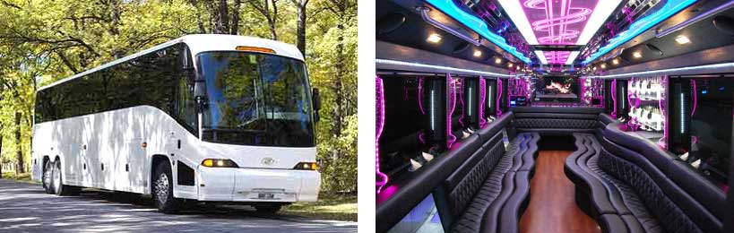 50 passenger party bus Homewood