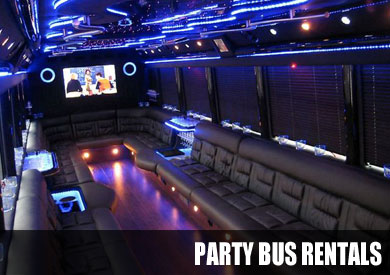 birthday party bus rental
