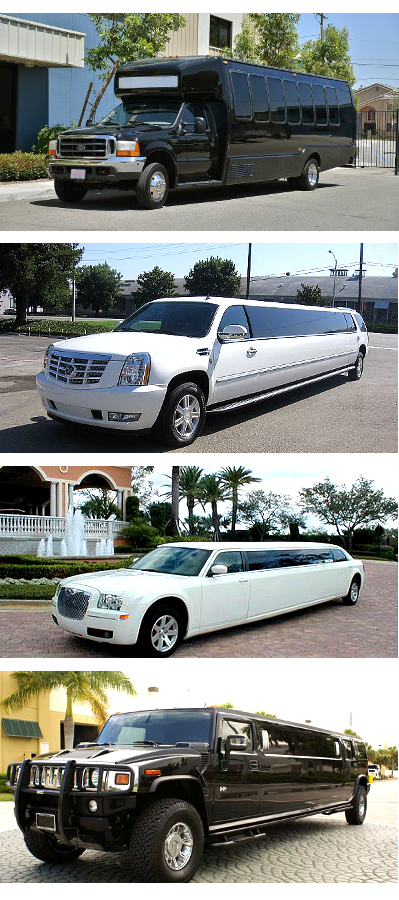 Party Buses and Limos Alabama