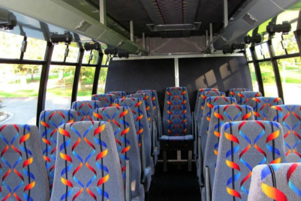 20 person mini bus rental Madison